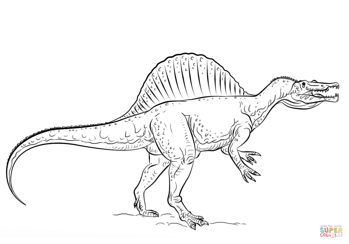 Free Coloring Pages Download Spinosaurus Page Printable Of