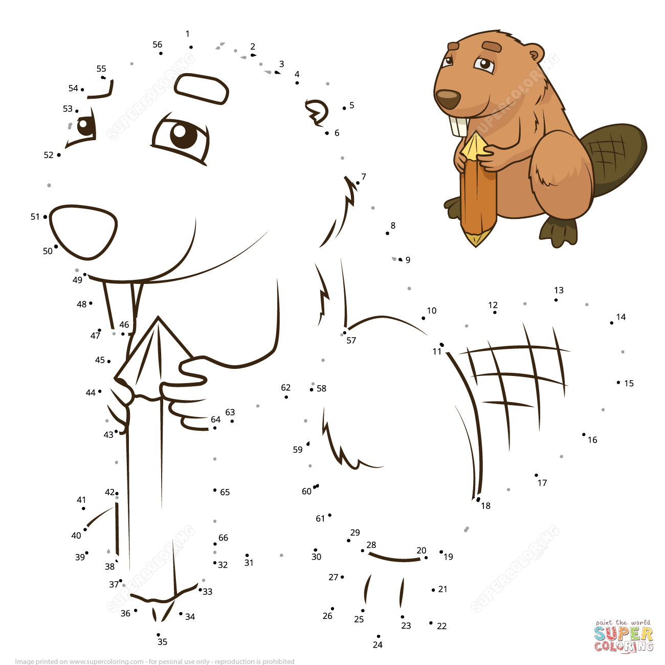 Beaver Dot To Dot