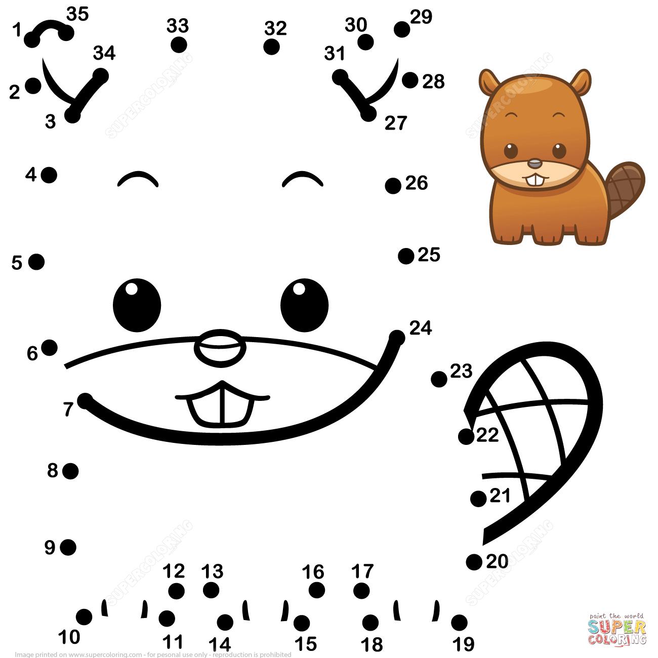 Cute Baby Beaver Dot To Dot