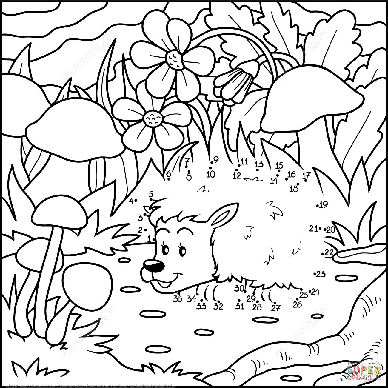 Hedgehog In A Forest Dot To Dot