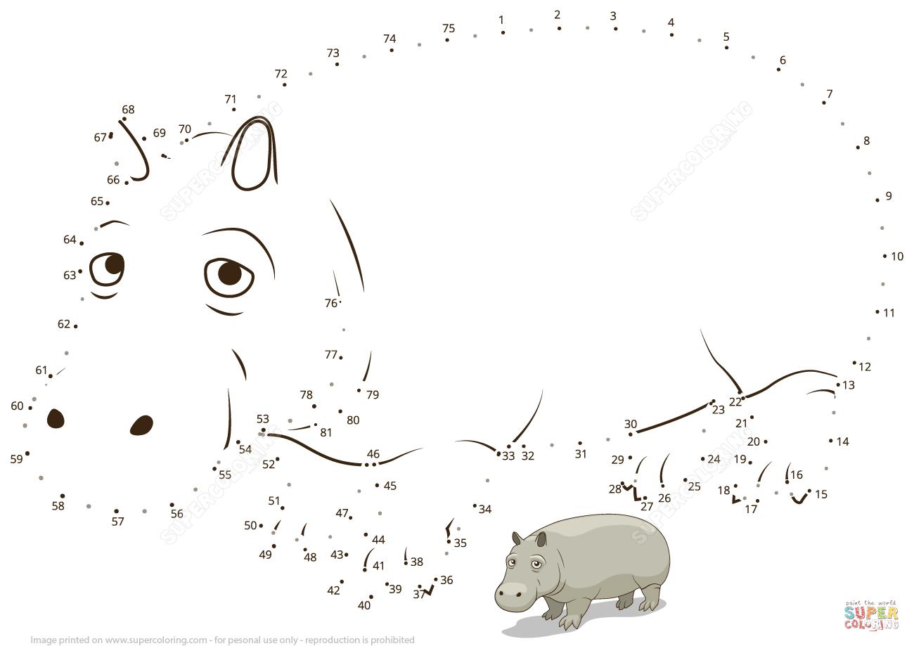 Hippopotamus Dot To Dot
