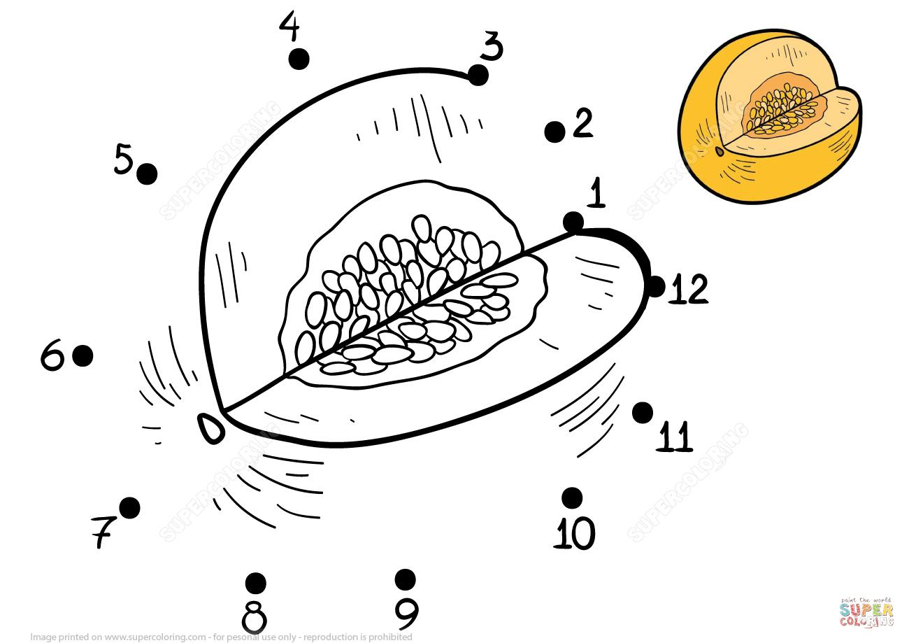 Honeydew Melon Dot To Dot