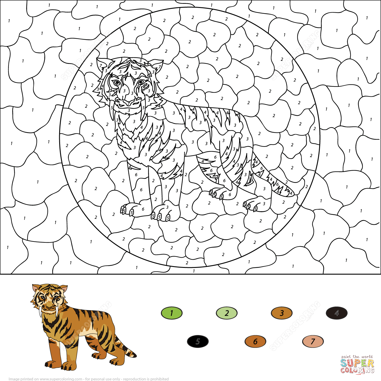 Saber Toothed Tiger Color By Number