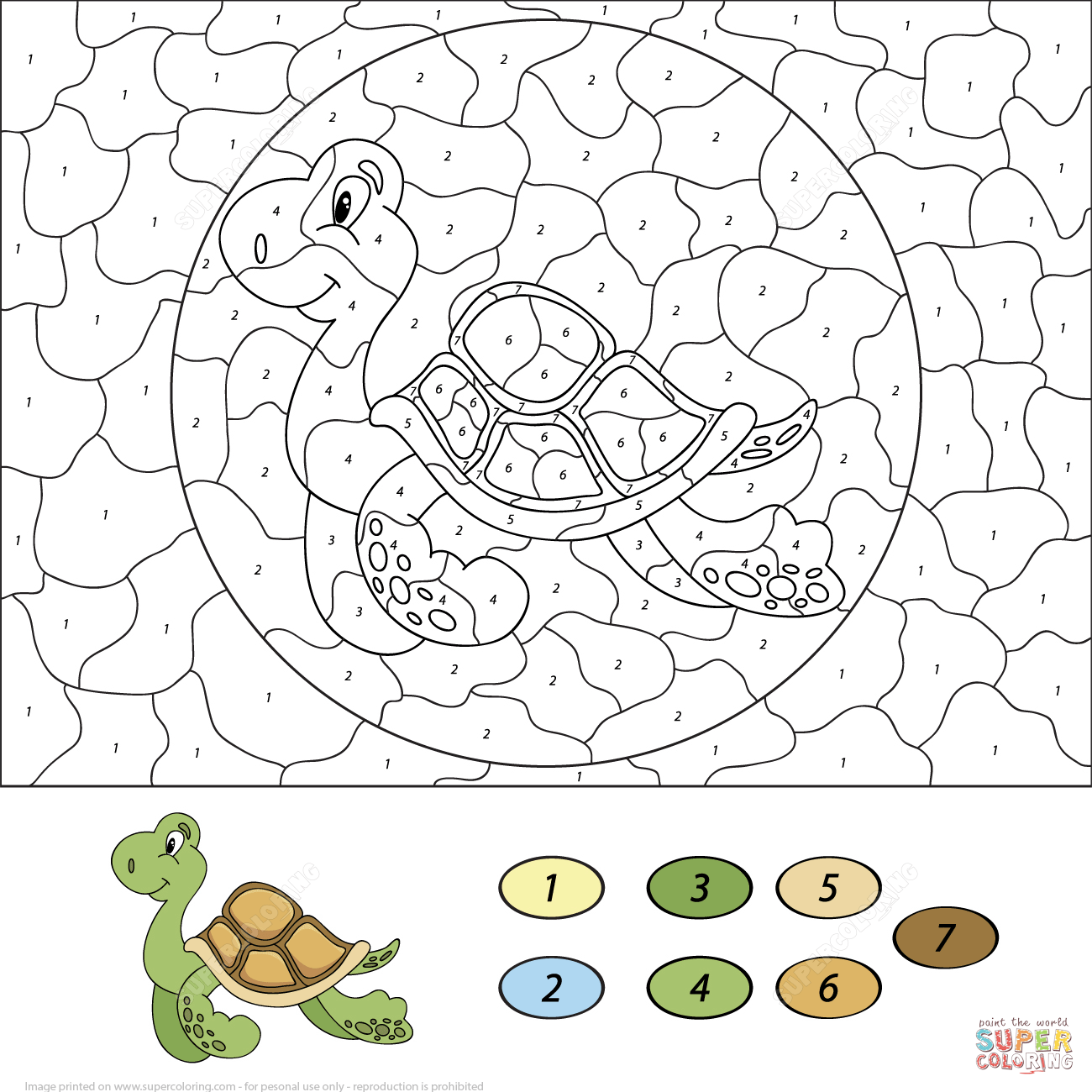 Sea Turtle Color By Number