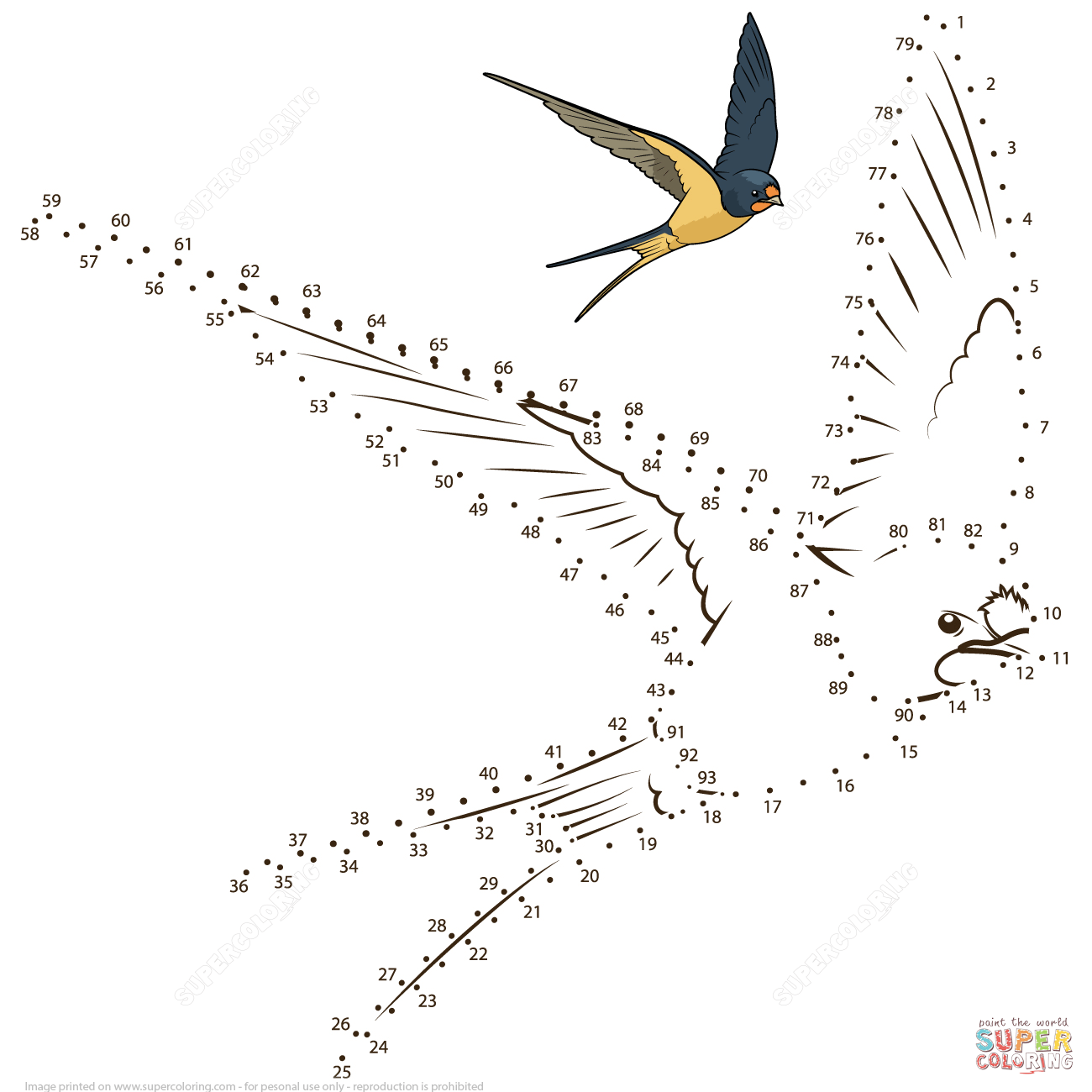 Swallow Dot To Dot