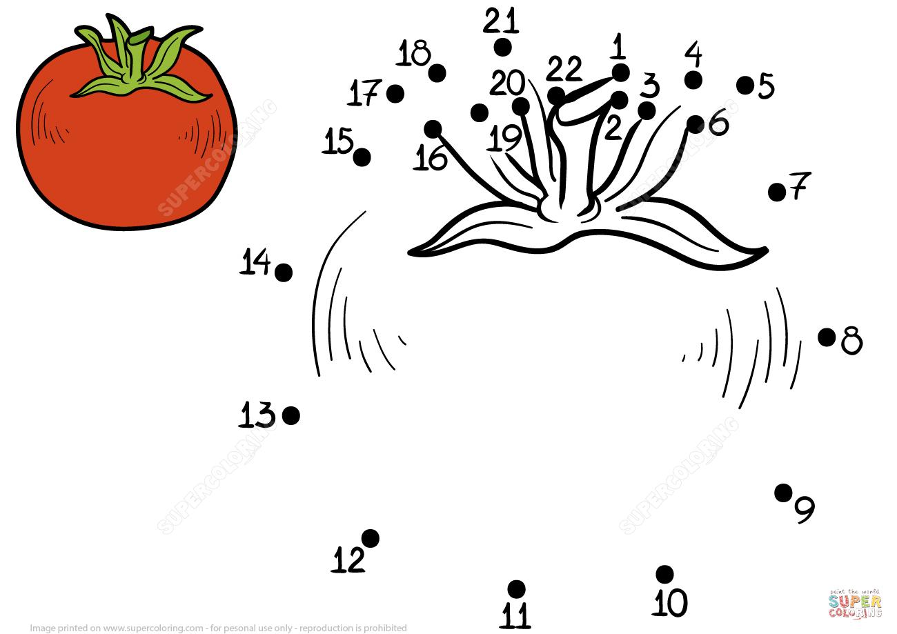 Tomato Dot To Dot