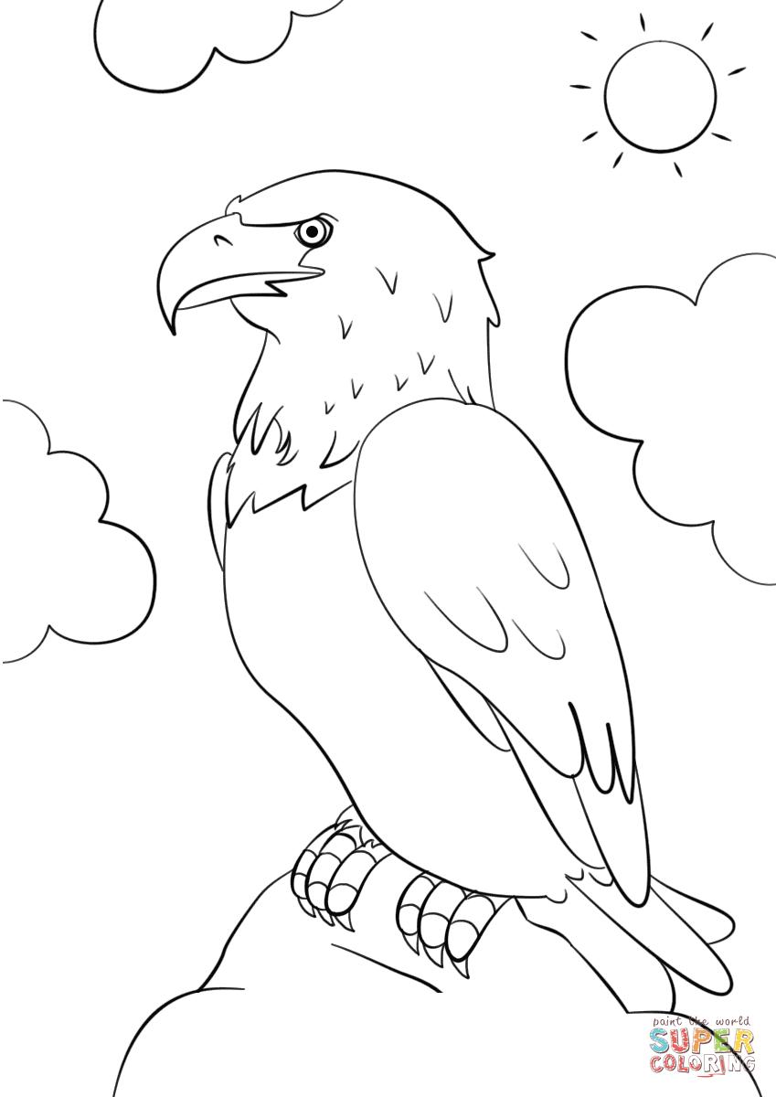 Gambar Bald Eagle Coloring Pages Printable Bald Eagle Head Jpeg Png ...
