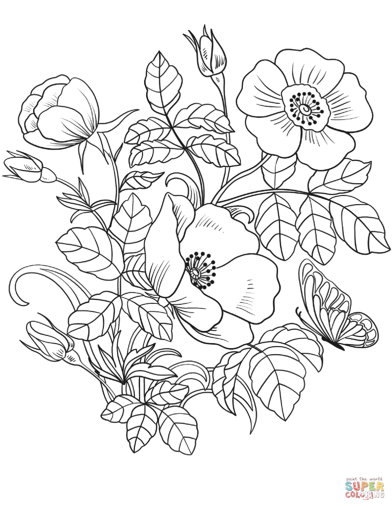 Spring Flowers coloring page | Free Printable Coloring Pages | free printable flower coloring pages