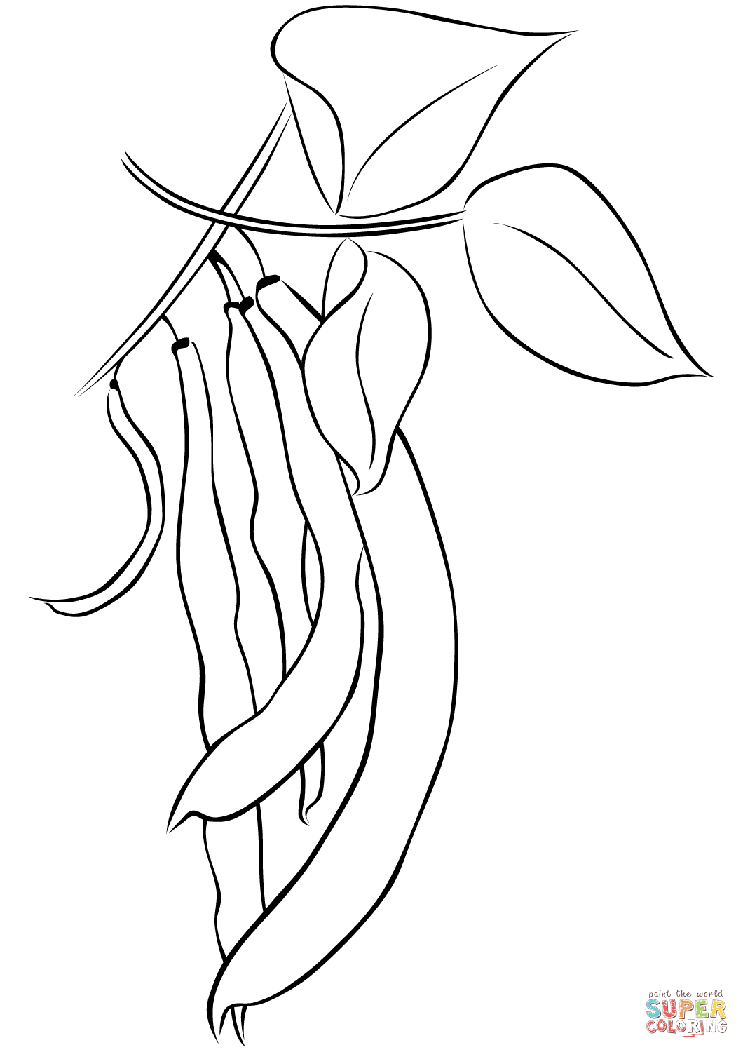 Beans Coloring Page