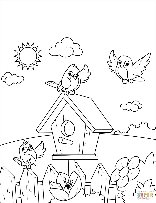 Birds Near A Birdhouse Coloring Page
