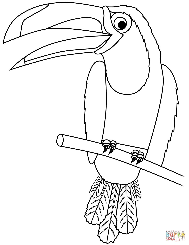 Desenho De Tucano Para Colorir