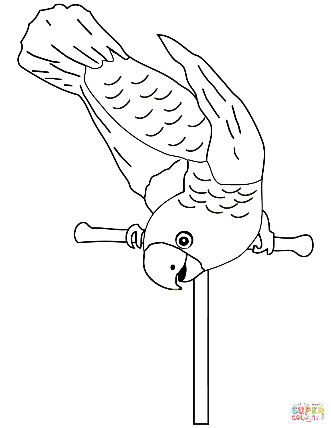 Parrot On Perch Coloring Page