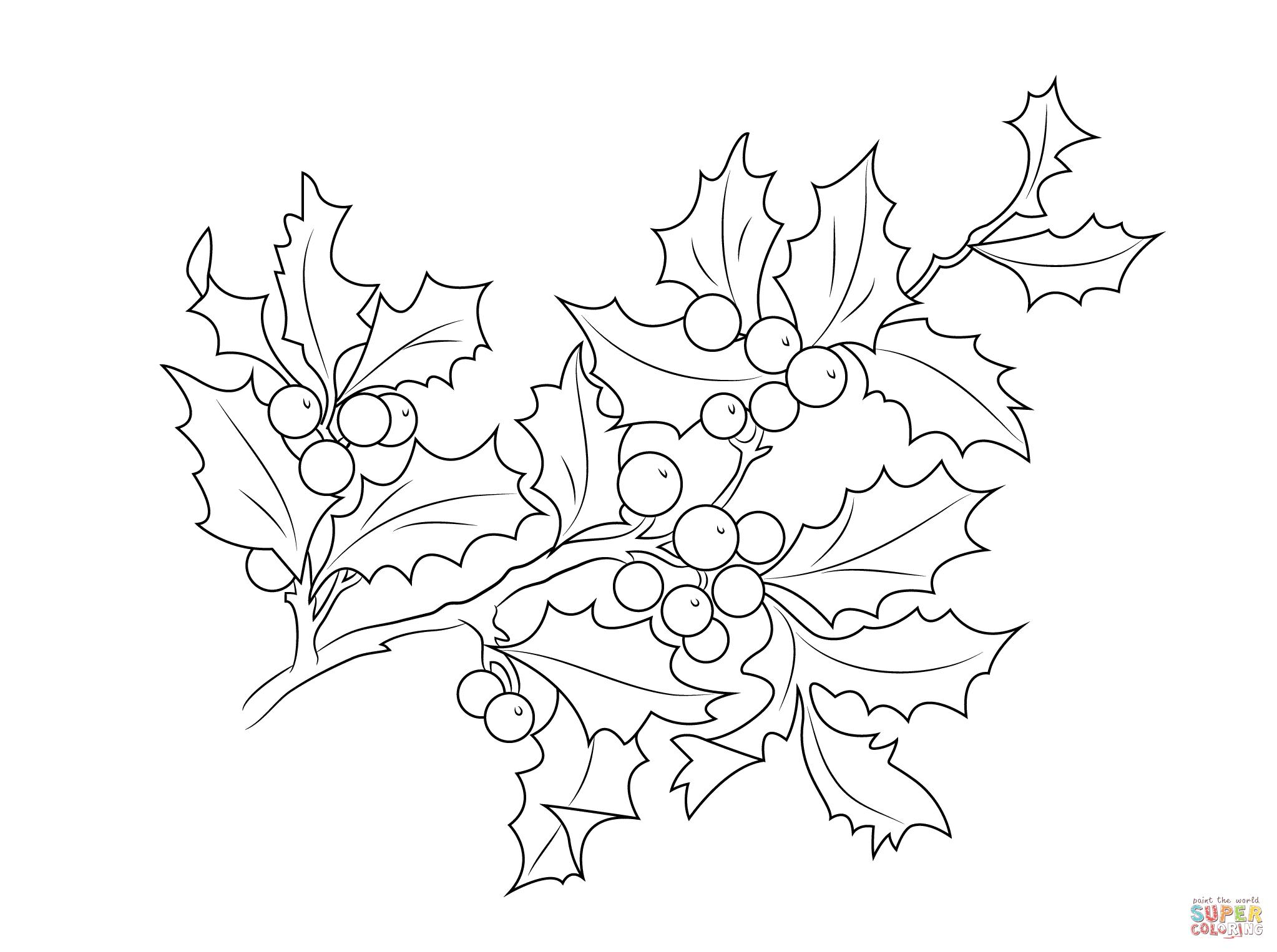 Ausmalbild Weihnachts Stechpalmen