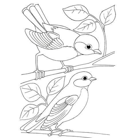 Tit Birds Coloring Page Free Printable Coloring Pages