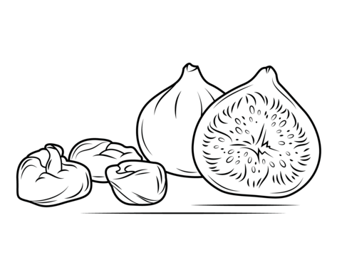 Fresh And Dry Figs Coloring Page Free Printable Coloring
