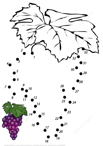 Grape Dot To Dot Free Printable Coloring Pages