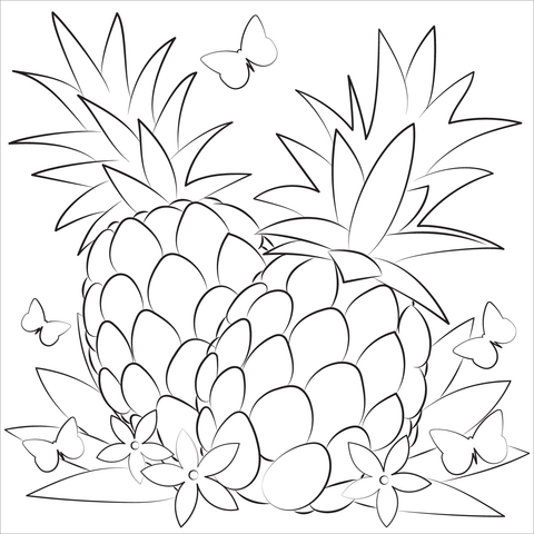 Pineapples Coloring Pages Free Coloring Pages