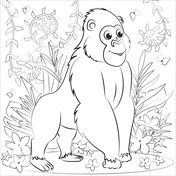 Gorillas Coloring Pages Free Coloring Pages