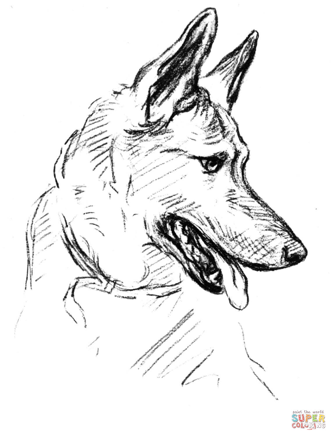 Australian Shepherd Dog Coloring Pages Coloring Pages