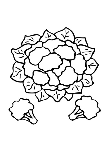 Cauliflower Coloring Page Supercoloring Com