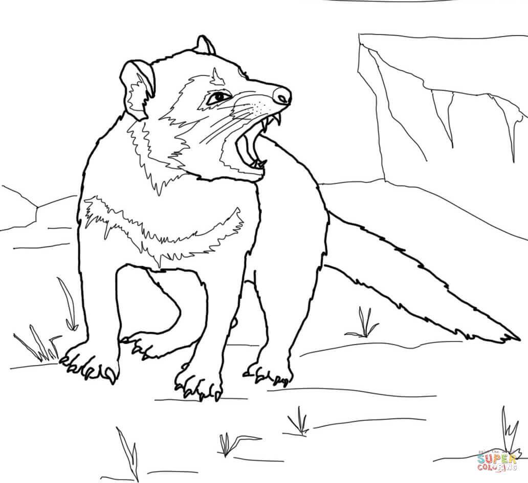 Tasmanian Devil Growling Coloring Online