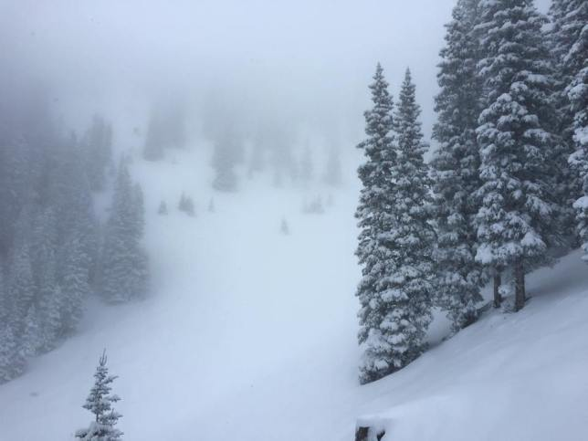 Variations on Extreme Skiing