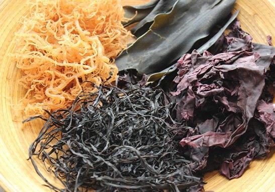 raw-vegan-diet-seaweed