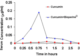 BioPerineを使用したクルクミンのバイオアベイラビリティ