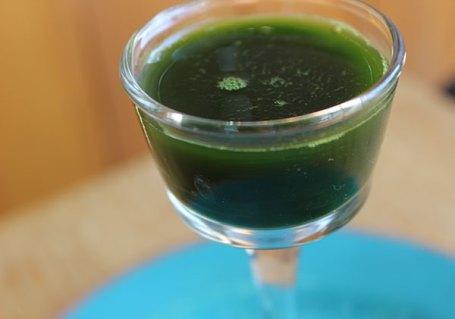 top-10-superfoods-list-microalgaes-marine-phytoplankton