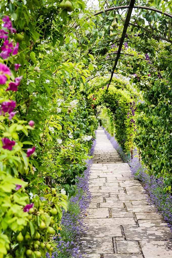 The fruit archway at Waitrose farm Leckford Estate