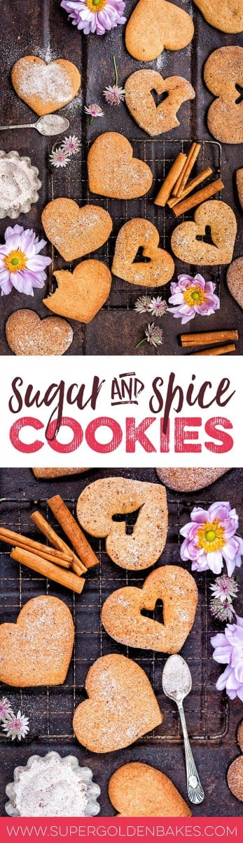 These easy sugar and spice cookies are fragrant with cinnamon, cloves and cardamom. Add cinnamon sugar for extra crunch!