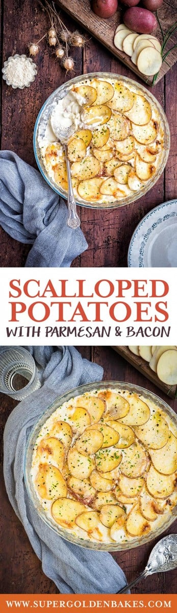 These creamy scalloped potatoes with Parmesan and bacon are the ultimate comfort food. Serve as a Thanksgiving or Christmas side dish | Supergolden Bakes #scallopedpotatoes #Thanksgiving #Christmas