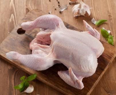 poulet - Poulets