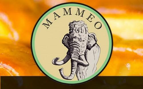 Mammeo Logo