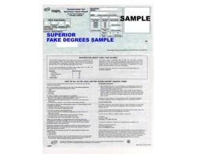 Fake Training Certificate Sample 1