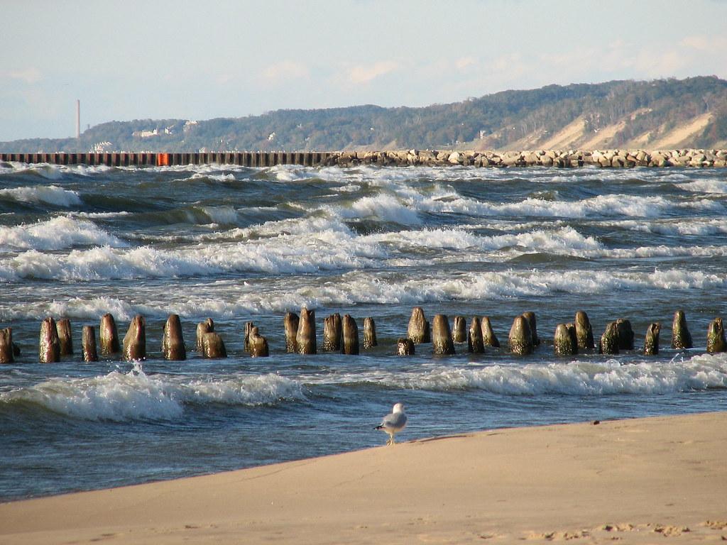 shoreline erosion