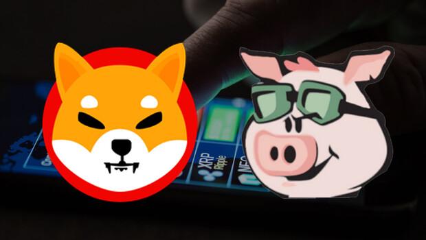 Son dakika… Kripto paralarda Shiba Inu ve Pig Finance rüzgarı