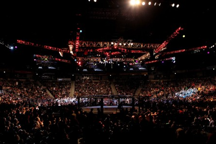 UFC completa 20 anos em novembro. Foto: Josh Hedges/UFC
