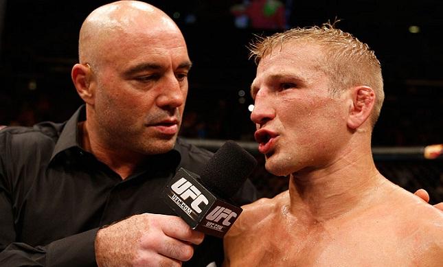 TJ (dir.) já defendeu o cinturão dos galos duas vezes. Foto: Josh Hedges/UFC