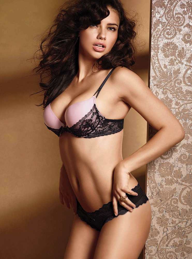 Adriana Lima for Victoria's Secret in 2011 [x 4]
