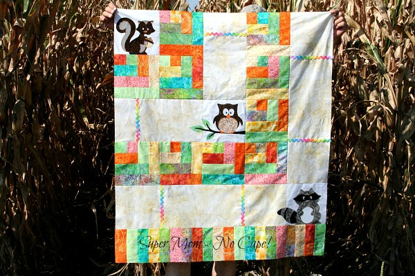 One Big Cabin quilt top with Squirrel, Owl and Raccoon applique blocks
