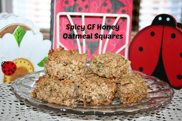 Spicy GF Honey Oatmeal Squares