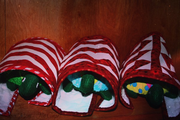 Turtles wrapped in their quilts ready for bed