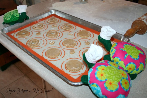 The Hexie Turtles checking out the tray.
