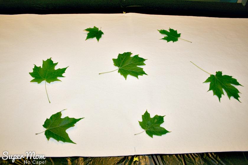 Several maple leaves arranged randomly on the table runner