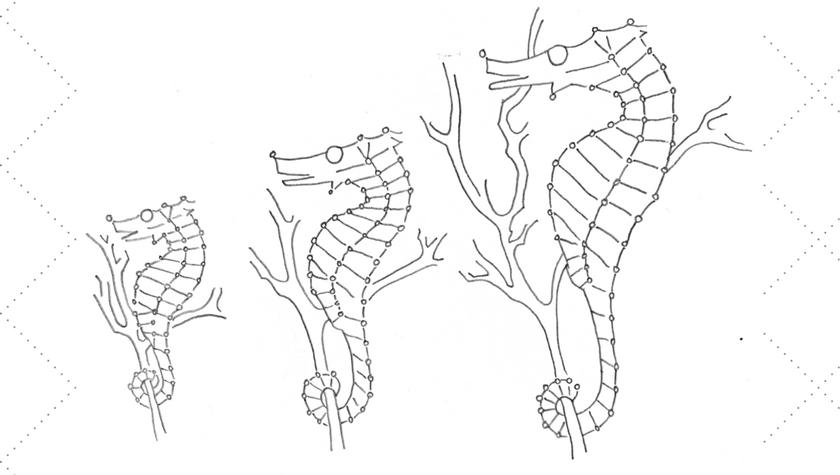 Vintage Workbasket Embroidery Pattern - Sea Horses