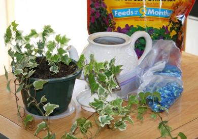 Teapot Planter