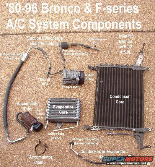 Ford Bronco General Purpose Pics Picture