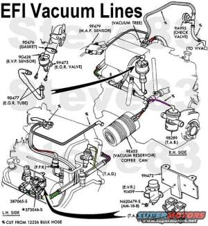 Vacuum Line RR on 1988 F150 302 50L  Ford Truck