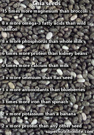 chia seed nutrition